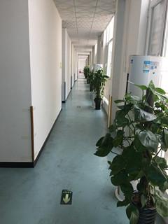 个训教室楼道